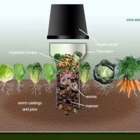 Build a Worm Tower To Spread Compost Over Your Garden